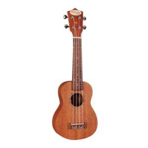 williams acoustic eu200s
